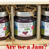 Are we a Jam?